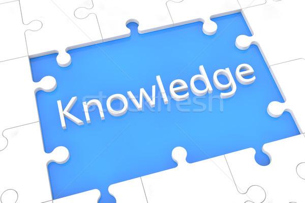 Puzzle knowledge concept Stock photo © Mazirama