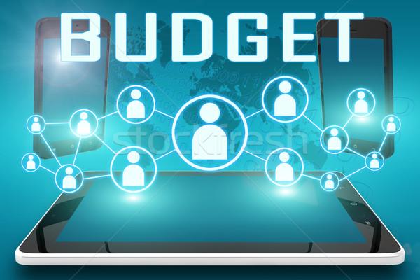 Orçamento texto ilustração social ícones Foto stock © Mazirama