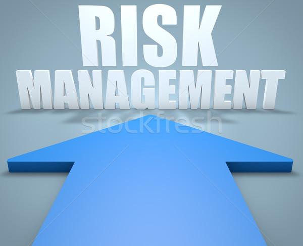 Risk Management Stock photo © Mazirama