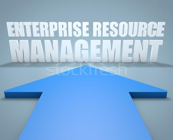 Impresa risorsa gestione rendering 3d blu arrow Foto d'archivio © Mazirama