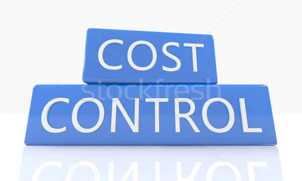 Maliyet kontrol 3d render mavi kutu metin Stok fotoğraf © Mazirama