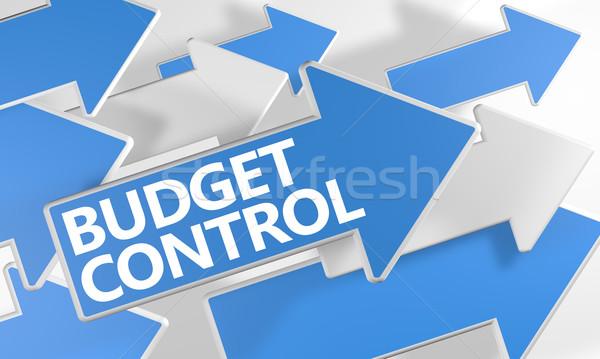 бюджет контроль 3d визуализации синий белый Стрелки Сток-фото © Mazirama