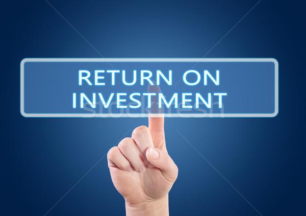 возврат инвестиции стороны кнопки интерфейс Сток-фото © Mazirama