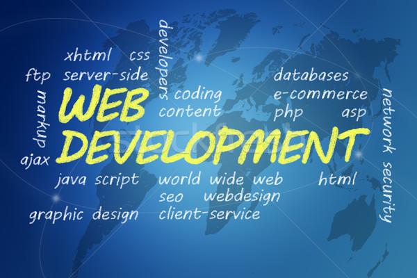Web Development Stock photo © Mazirama