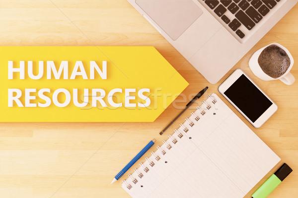 Humanismo recursos linear texto seta caderno Foto stock © Mazirama