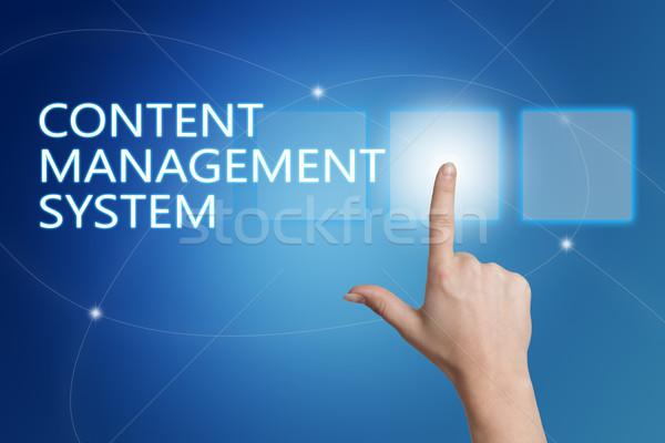Content Management System Stock photo © Mazirama