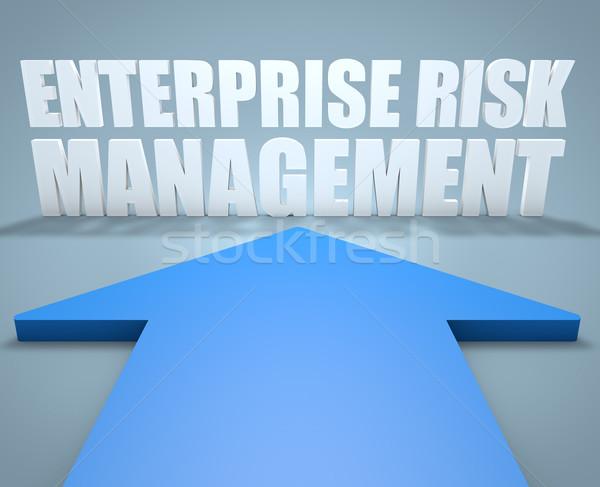 Empresa gestão de risco 3d render azul seta indicação Foto stock © Mazirama