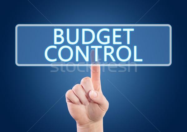 Költségvetés irányítás kéz kisajtolás gomb interfész Stock fotó © Mazirama