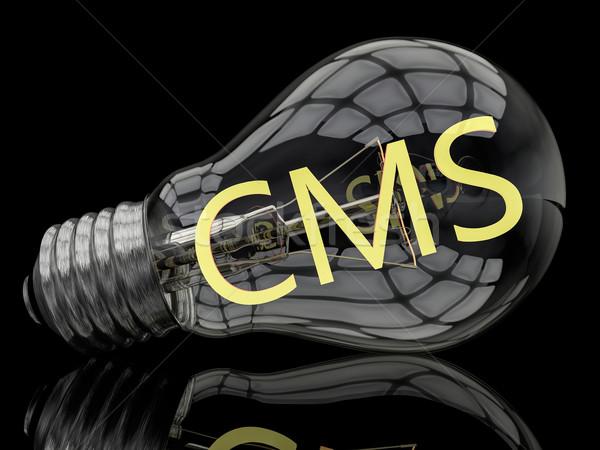 Conteúdo gestão cms lâmpada preto texto Foto stock © Mazirama