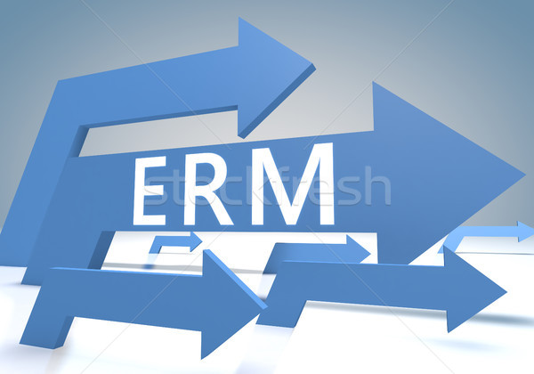 Enterprise Risk Resource Managament Stock photo © Mazirama