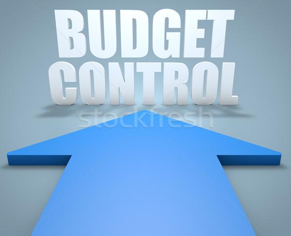 бюджет контроль 3d визуализации синий стрелка указывая Сток-фото © Mazirama