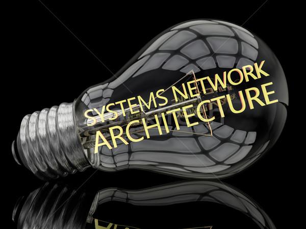 Netzwerk Architektur Glühbirne schwarz Text 3d render Stock foto © Mazirama