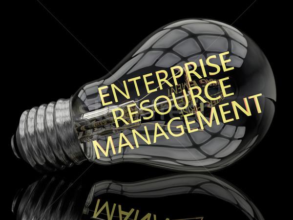 Empresa recurso gestão lâmpada preto texto Foto stock © Mazirama