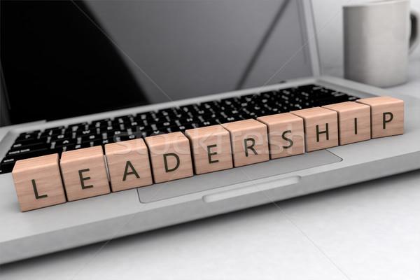 Leadership text concept Stock photo © Mazirama