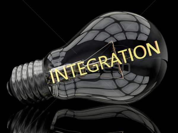 Integración bombilla negro texto 3d ilustración Foto stock © Mazirama