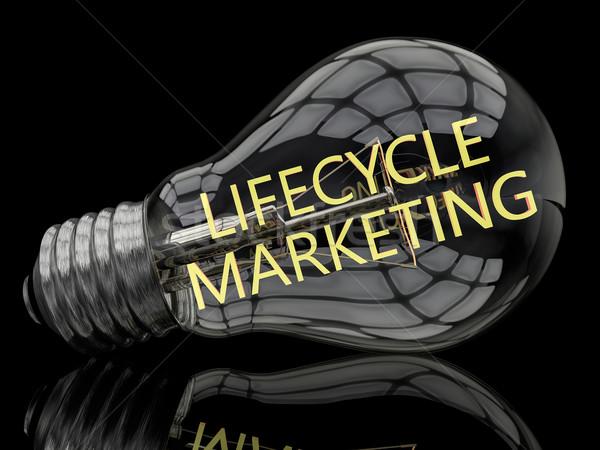 Жизненный цикл маркетинга лампочка черный текста 3d визуализации Сток-фото © Mazirama