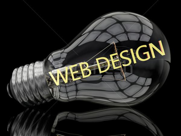 Web Design Stock photo © Mazirama