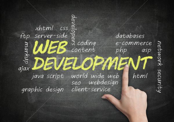 Blackboard Web Development Stock photo © Mazirama