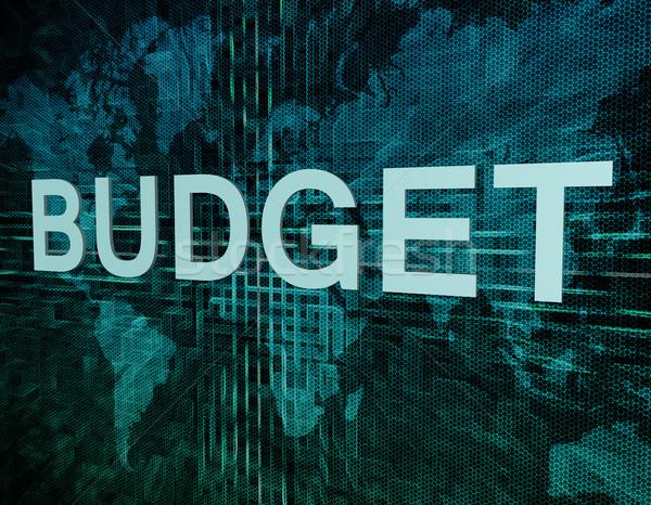 Budget Text grünen digitalen Weltkarte Business Stock foto © Mazirama