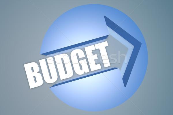 Költségvetés szöveg 3d render illusztráció nyíl kör Stock fotó © Mazirama