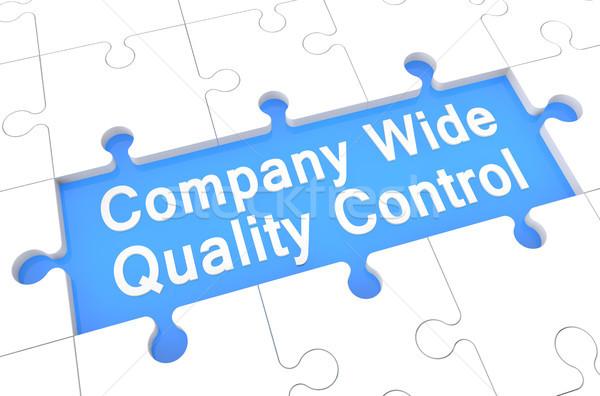 Companhia grande controle de qualidade quebra-cabeça 3d render ilustração Foto stock © Mazirama