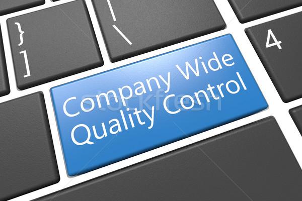 Bedrijf breed kwaliteitscontrole toetsenbord 3d render illustratie Stockfoto © Mazirama