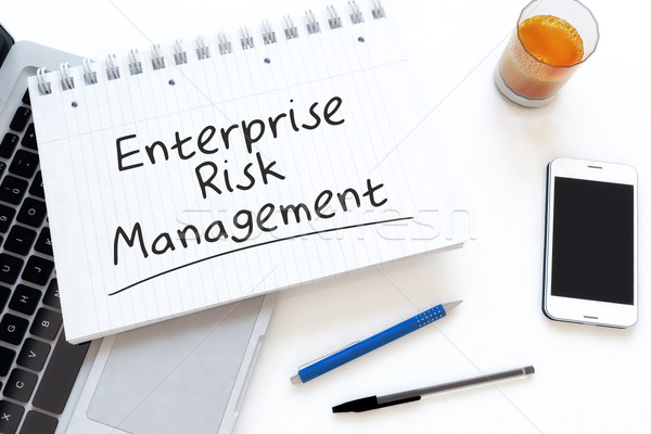 Enterprise Risk Management Stock photo © Mazirama
