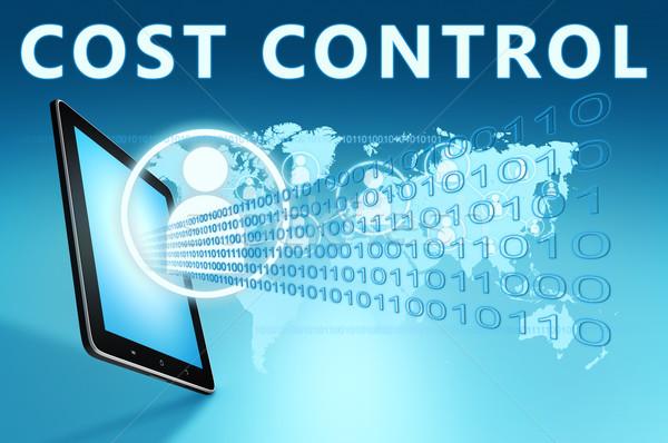 Costo control ilustración azul negocios Foto stock © Mazirama