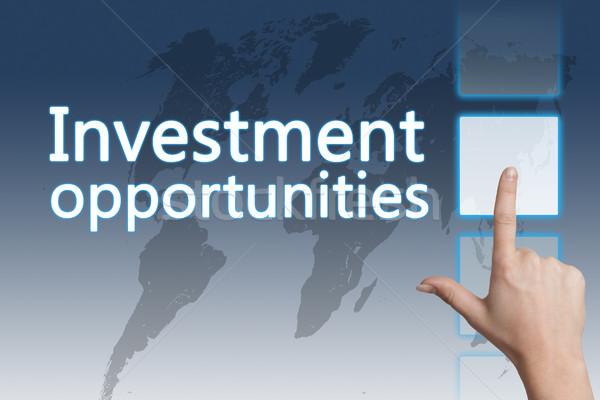 Yatırım iş sözler dijital dünya haritası Stok fotoğraf © Mazirama