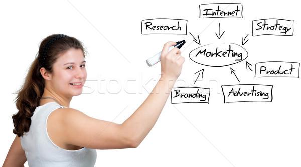 Marketing Diagram Stock photo © Mazirama