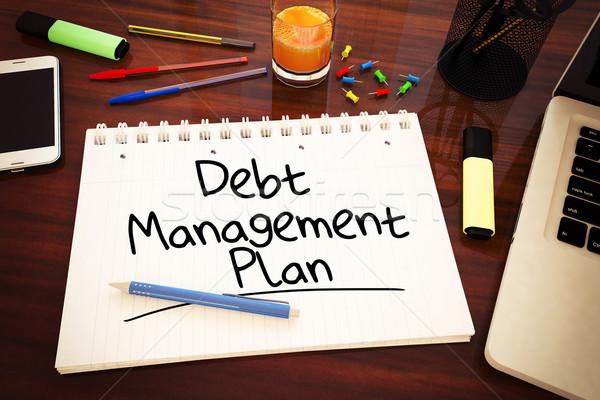 Foto stock: Dívida · gestão · plano · texto · caderno