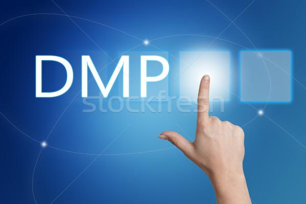 Foto stock: Dados · gestão · dívida · plano · mão
