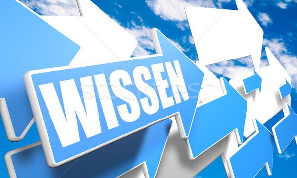Woord kennis 3d render Blauw witte pijlen Stockfoto © Mazirama