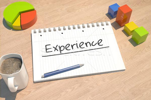 Experience text concept Stock photo © Mazirama