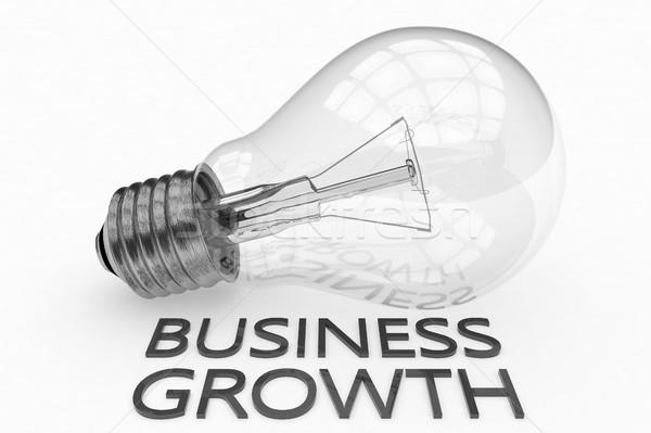 Zdjęcia stock: Działalności · wzrostu · żarówka · biały · tekst · 3d