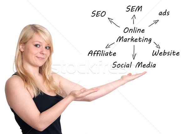 Интернет маркетинг маркетинга деловая женщина схема бизнеса Сток-фото © Mazirama