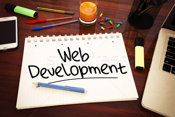 Web Development Stock photo © Mazirama
