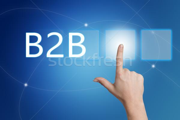 бизнеса b2b стороны кнопки интерфейс Сток-фото © Mazirama