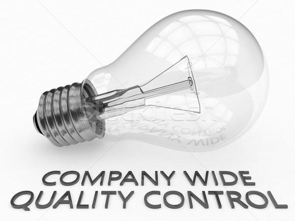 Companhia grande controle de qualidade lâmpada branco texto Foto stock © Mazirama
