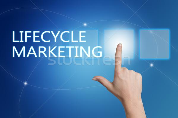 Жизненный цикл маркетинга стороны кнопки интерфейс Сток-фото © Mazirama