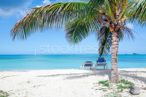 Tropikal plaj plaj doğa manzara deniz Stok fotoğraf © mblach