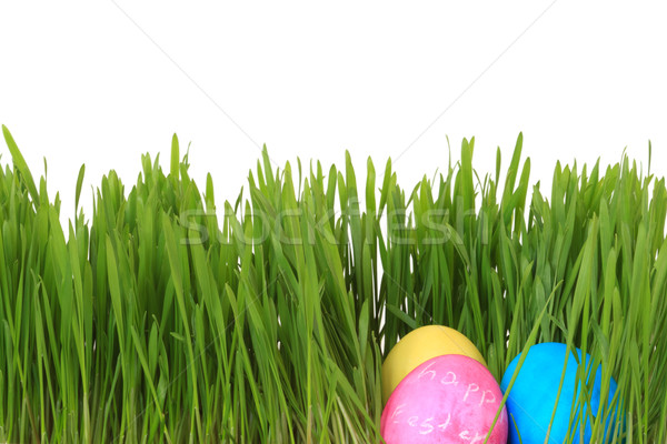easter eggs Stock photo © mblach