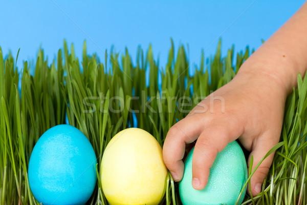 Сток-фото: охота · пасхальных · яиц · мало · стороны · яйцо · трава