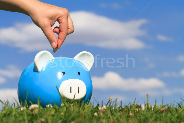 savings Stock photo © mblach