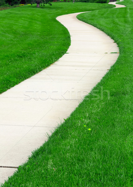 Pathway Stock photo © mblach