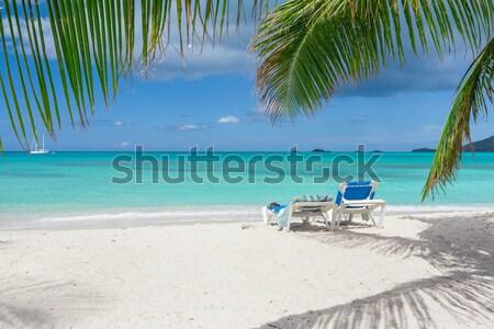 Praia tropical tropical areia branca praia natureza paisagem Foto stock © mblach