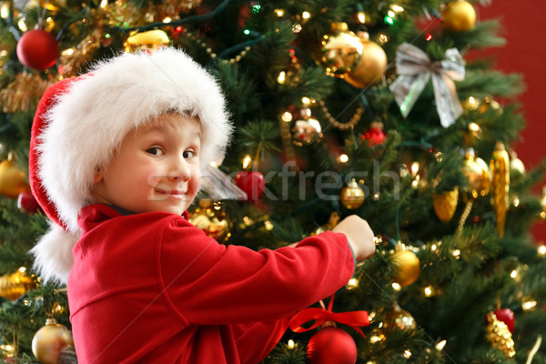 boy decorating Christmas tree Stock photo © mblach