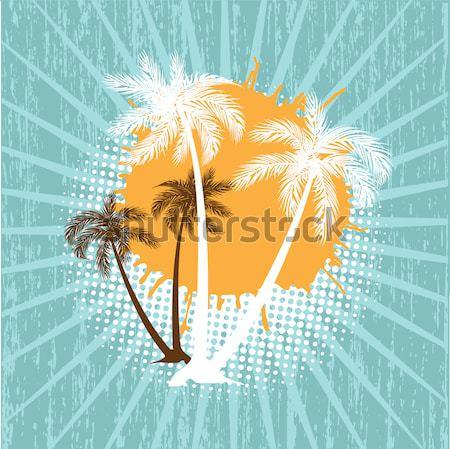 Lata grunge plaży palmy niebo projektu Zdjęcia stock © mcherevan