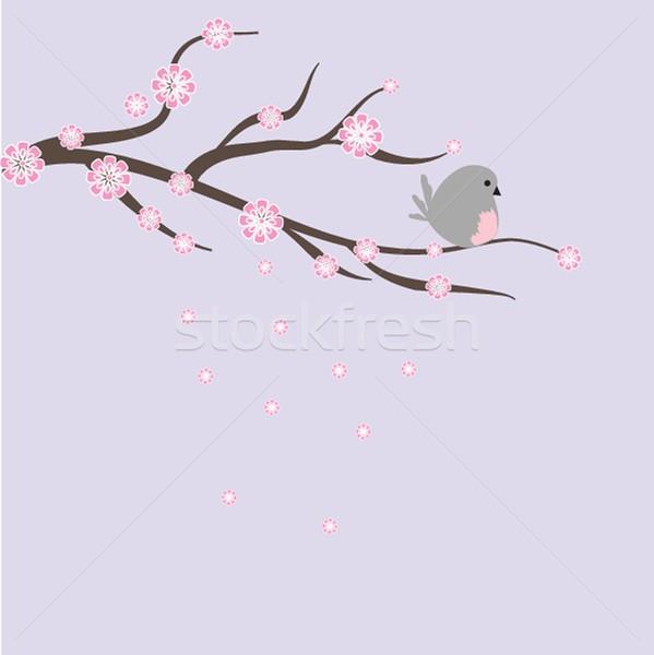 Fiore ciliegio biglietto d'auguri albero wedding panorama Foto d'archivio © mcherevan