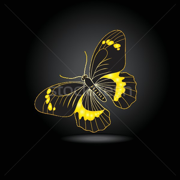 Beautiful fairy gold butterfly with shadow Stock photo © mcherevan